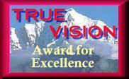 True Vision Award for
